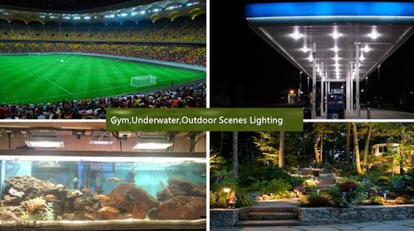 50w LED Flood Light With 120° Beam Angle PF > 90% AC100V - 265V 3000K / 6000K