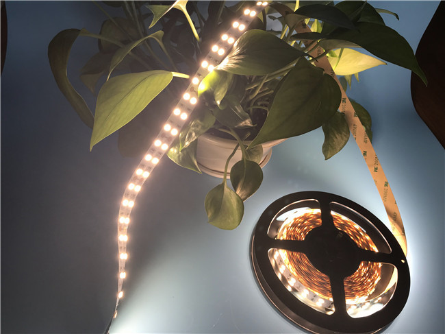 IP20 Flexible LED Strip Light 120 leds For Hotel Lighting With 15MM Pure Copper FCB