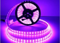 China Flexible LED Strip Light 5050 RGB DC12V / DC24V Double Line 28.8W/M Power factory