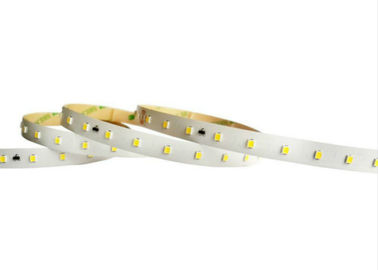 China 48 Volt 2835 SMD 10MM Width Flexible Light Strip 50 Meters Low Voltage Dropping factory